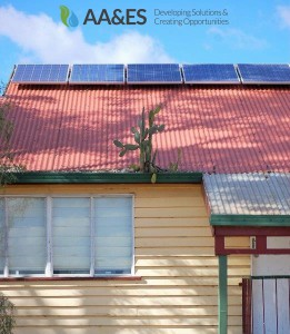 Prickly pear on roof-2-891x1024